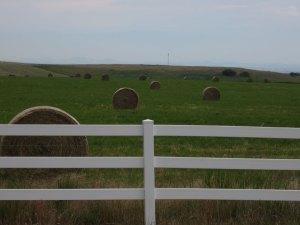More hay balls